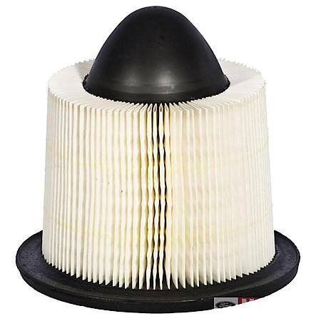 Advance Auto Parts- air filter