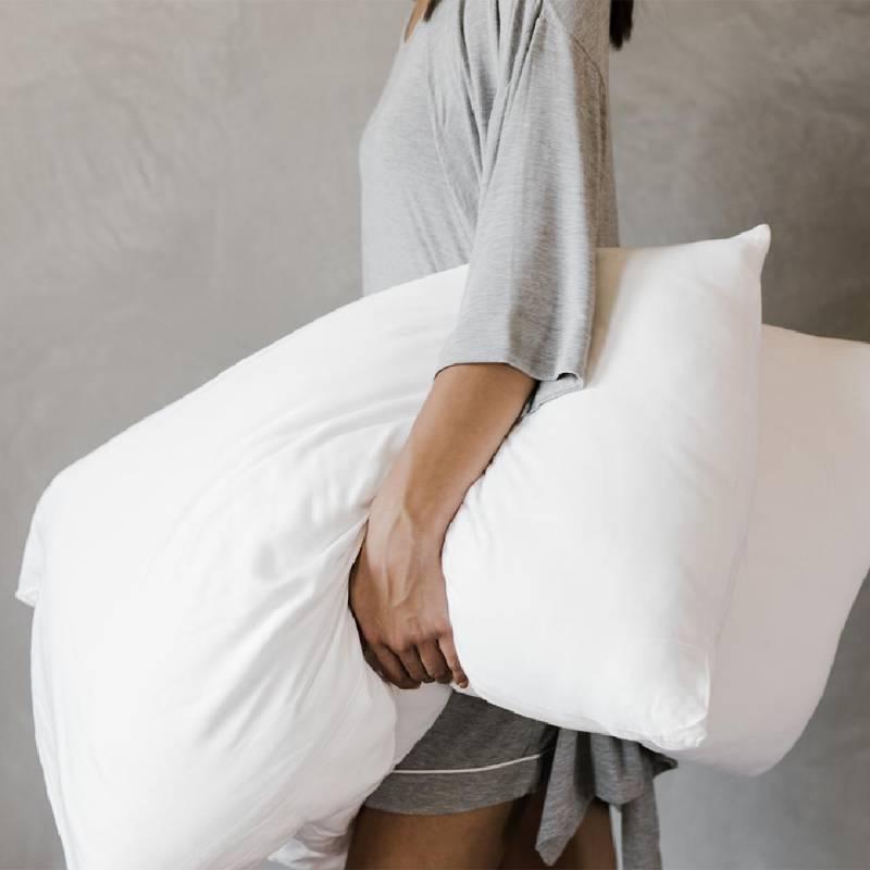 Cozy Earth Silk Pillows